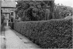 Begijnhof Herentals-5