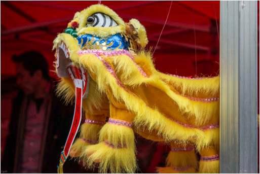 Chinees nieuwjaar (9)
