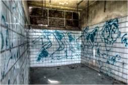 Old swimming pool-7