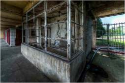 Old swimming pool-9