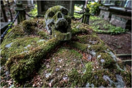 Cemetery of the skull-1