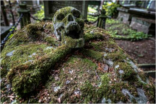 Cemetery of the skull-1