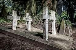 Cemetery of the skull-3
