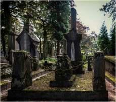 Cemetery of the skull-4