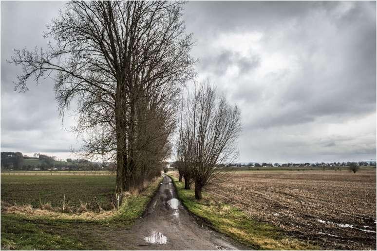 Flemish landscape
