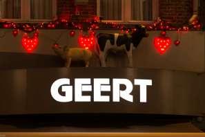 Geert-2