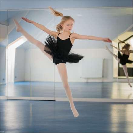 Prima Ballerina (18)
