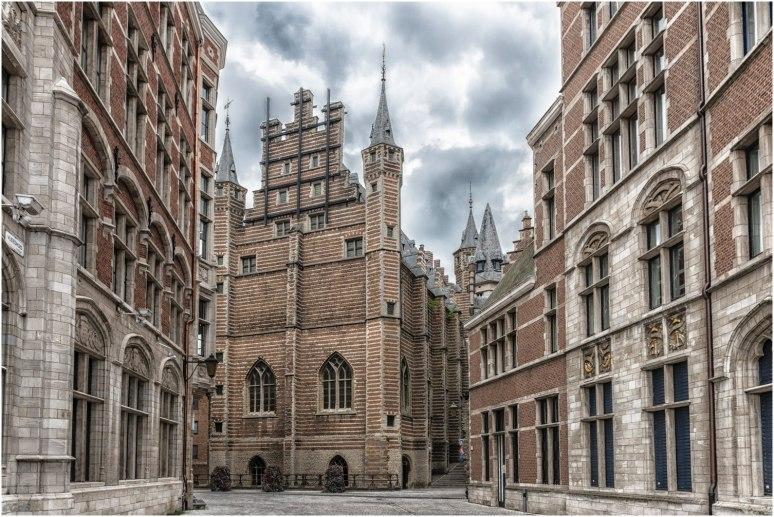 Antwerpen vleeshuis