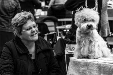 Honden en baasjes-11