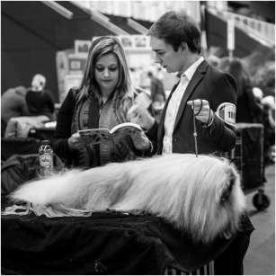 Honden en baasjes-17