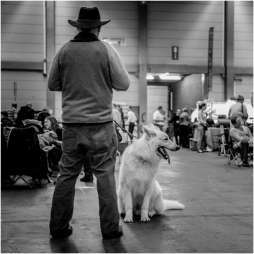 Honden en baasjes-2