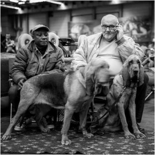 Honden en baasjes-3
