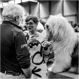 Honden en baasjes-6