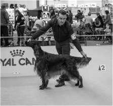 Honden en baasjes-8