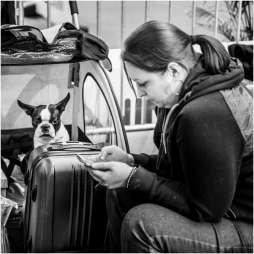 Honden en baasjes