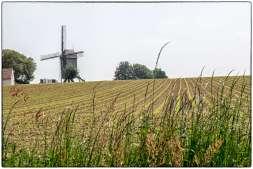 Vlaamse ardennen 21
