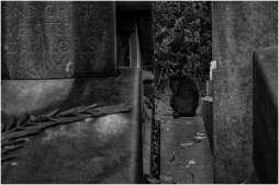 westerbegraafplaats-10