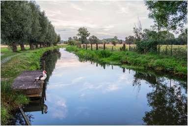 Vlaamse Ardennen-5