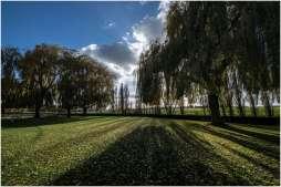 Lijssenthoek Military Cemetery-9
